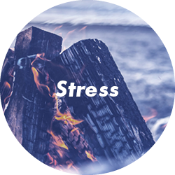 types of therapy stress